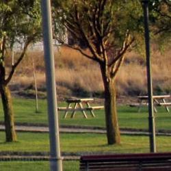 Alumbrado del Parque de la Balsa